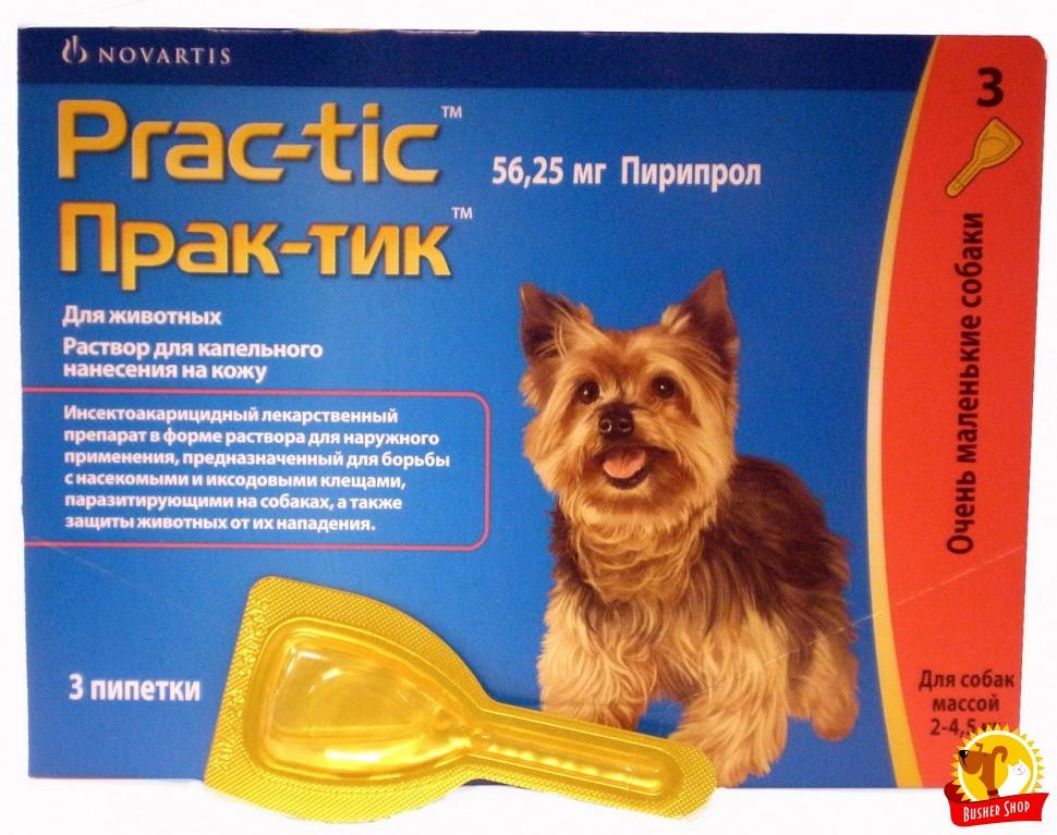 Пирипрол Для Собак Инструкция - фото 11